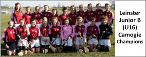 Leinster Camogie 2015 U16